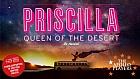 Apollo Players: Priscilla Queen of the Desert