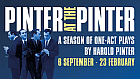 Pinter at the Pinter - Further Casting Announced