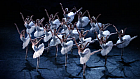 Captivating dance performed by the Russian State Ballet of Siberia