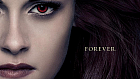Calling all Twi-Hards... The Complete Twilight Saga comes to the Ambassadors Cinemas