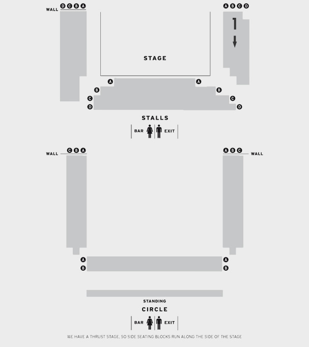 Donmar Warehouse Trelawny of the Wells seating plan